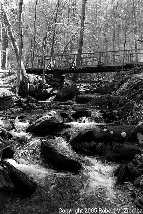 """""""Cat Hollow Brook""""-A black and white image of a foot bridge crossing over a small brook in the forest."""