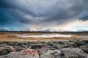 Warm alkaline ponds during a clearing storm in the Owens Valley near Crowley Lake.