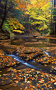 Autumn, Otter Creek, York County, PA