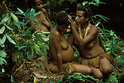 A Kombai woman picks lice from the hair of a pregnant friend during a break in a hunting and gathering trip in the rainforest in Papua, Indonesia. September 2000. The Kombai are a so-called treehouse people who build their homes high up in the trees. The woman wears a dog's tooth necklace and a rat tail headband.