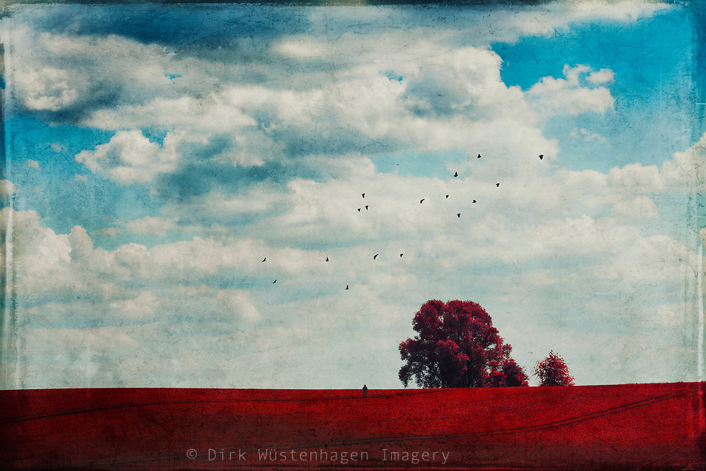 Surreal rural landscape - manipulated photograph