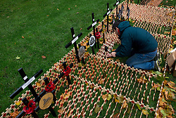 © Licensed to London News Pictures.06/11/2013. London, UK. A volunteer prepares the Field of remembrance at Westminster Abbey. Every November the annual Field of Remembrance at Westminster Abbey is organised and run by The Poppy Factory. This year officially it will be opened on Thursday 7 November. Remembrance crosses are provided so that ex-Service men and women, as well as members of the public, can plant a cross in memory of their fallen comrades and loved ones.Photo credit : Peter Kollanyi/LNP