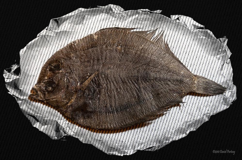 Fish, dried