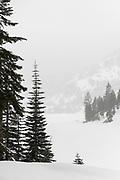 Three hikers at Echo Lake in the Sierra Nevada in winter, Eldorado National Forest, California