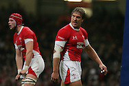 Andy Powell of Wales looks on. Invesco Perpetual series 2008 autumn international match, Wales v New Zealand at the Millennium Stadium on Sat 22nd Nov 2008. pic by Andrew Orchard, Andrew Orchard sports photography,