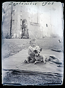 baby toddler with fox terrier pet dog playing France 1923