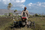 Peasant with a tilling machine, a much coveted farming technology in Haiti. Artibonite Valley, Haiti. January 23, 2008.