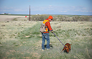 SHOT 5/9/20 8:46:44 AM - Various pointing breeds compete in the Vizsla Club of Colorado Licensed Hunt Test Premium at the Rocky Mountain Sporting Dog Club Grounds in Keenesburg, Co. (Photo by Marc Piscotty / © 2020)
