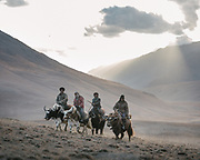 """Men returning on their yaks after cutting fodder. Life in Baiqara, a Wakhi High pasture inhabited for about 6 months of the year, from May until October. Guiding and photographing Paul Salopek while trekking with 2 donkeys across the """"Roof of the World"""", through the Afghan Pamir and Hindukush mountains, into Pakistan and the Karakoram mountains of the Greater Western Himalaya."""