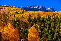 Autumn color, the Sneffels Range, near Ridgway, Colorado USA.