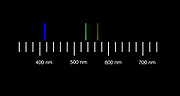 The atomic emission spectra of mercury gas. <br /> Mercury vapor emission spectroscopy. Emission spectroscopy examines the wavelengths of photons emitted by atoms or molecules during their transition from an excited state to a lower energy state.
