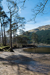 Loch Eck viewed from Jubilee Point. Situated on the eastern shore of the Loch Eck Jubilee Point is a picnic site on Forestry Commission Scotland Land <br /> Red squirrels forage its shores of the Loch and deep under its surface swims Scotland's rarest freshwater fish – the powan a relic from the ice age,  it is protected and only found in Loch Eck and Loch Lomond.<br /> <br /> 04 April  2015<br /> Image © Paul David Drabble <br /> www.pauldaviddrabble.co.uk