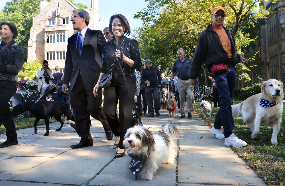 (Mara Lavitt — New Haven Register) <br /> October 12, 2013 New Haven<br /> Yale University held a campus-wide open house in celebration of Peter Salovey's inauguration on Sunday as the 23rd president of Yale. The celebration started with a Canine Kickoff, inviting all campus dogs to attend. A procession around Cross Campus included Salovey, his wife Marta Moret, and the First Dog, Portia.