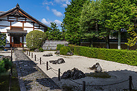 Kyaku-den Garden at Jisho-in is a dry landscape garden which effectively incorporates the arrangement of stones, moss and a 300 year-old pine tree.  Jisho-in Templeis one of sub-temples of Shokokuji in Kamigyo Ward, Kyoto City. Shokokuji is the head of the Rinzai secto of Shokokuji School of Zen Buddhist nad has 16 sub-temples) Jisho-in was constructed in the Muromachi period of 1405 by a Zen priest and 13th abbot of Shokoku-ji,Chuen Zaochu. Jisho-in is rarely open to the public though its dry landscape karesansui garden is viewable through the main gate, free of charge.