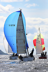 Peelport Clydeport, Largs Regatta Week 2014 Largs Sailing Club based at  Largs Yacht Haven with support from the Scottish Sailing Institute & Cumbrae.<br /> <br /> Class 4, 6731, Zebedee, Garth Wilson