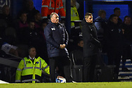 AFC Wimbledon manager Wally Downes during the EFL Sky Bet League 1 match between Portsmouth and AFC Wimbledon at Fratton Park, Portsmouth, England on 1 January 2019.
