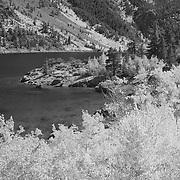 Lake Sabrina - Infrared Black & White