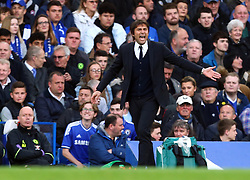 May 8, 2017 - Chelsea, Greater London, United Kingdom - Chelsea manager Antonio Conte .during Premier League match between Chelsea and Middlesbrough at Stamford Bridge, London, England on 08 May 2017. (Credit Image: © Kieran Galvin/NurPhoto via ZUMA Press)