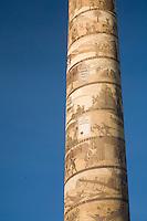 Scenic image of the Astor Column. Astoria, Oregon.