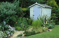 Gravel path leading to painted shed in seaside themed garden. Eryngiums, yuccas and phormium. Decorative use of painted spades.