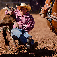 Steer wrestler Matthew Jodie digs his heels in during the High School Finals rodeo Friday at Red Rock Park in Gallup.