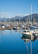 Alaska. Seward small boat harbor.