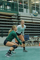 26 August 2017:   during the green-white scrimmage of the Illinois Wesleyan Titans in Shirk Center, Bloomington IL