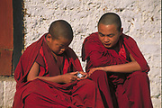Buddhist Monks<br />