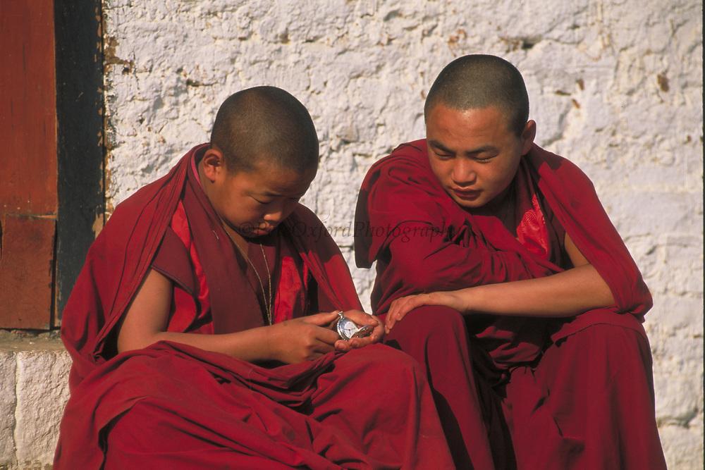 Buddhist Monks<br />Dzongchung Temple<br />Punakha,  BHUTAN