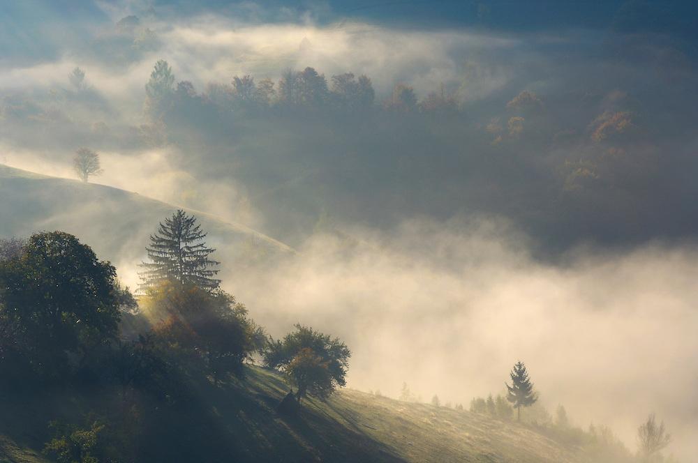 Misty morning in the southern carpathians, near Zarnesti, Transylvania, Southern Carpathians, Romania