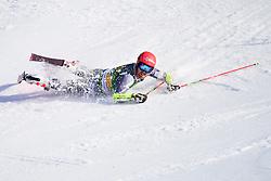 March 9, 2019 - Kranjska Gora, Kranjska Gora, Slovenia - Leif Kristian Nestvold - Haugen of Norway in action during Audi FIS Ski World Cup Vitranc on March 8, 2019 in Kranjska Gora, Slovenia. (Credit Image: © Rok Rakun/Pacific Press via ZUMA Wire)