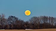 December Moonrise, Final Full Moon of the year. Photo taken Dec. 11, 2019, in Ashton, WI.
