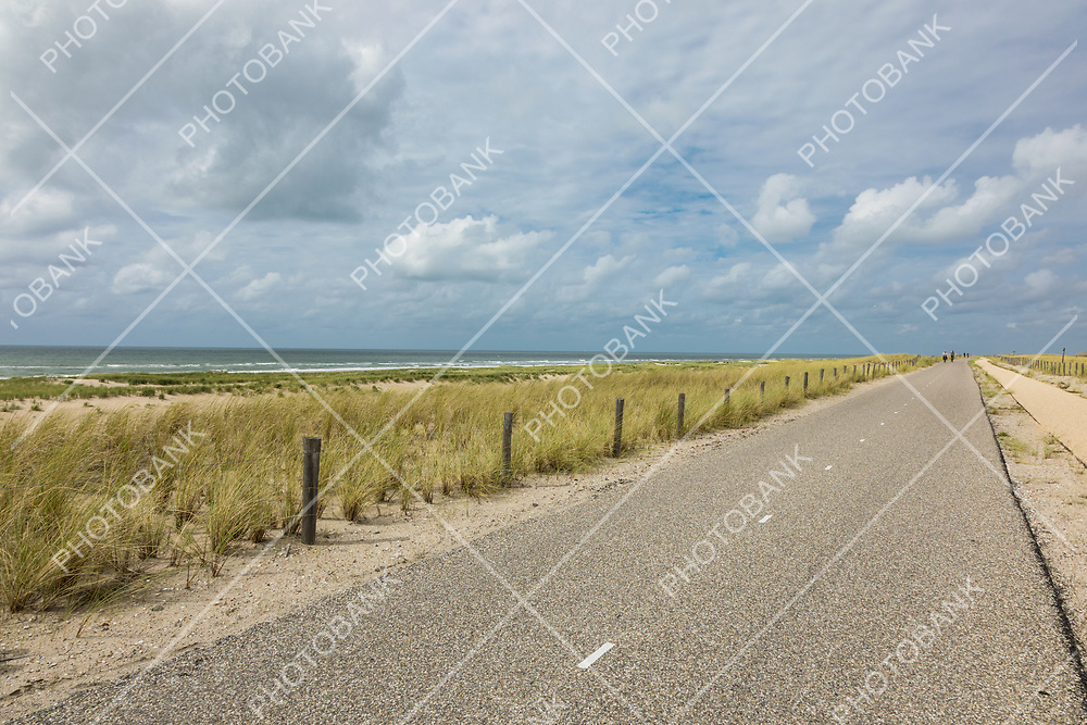 Bicycle trail immersed in the nature of the Netherlands