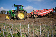 Grimme 25 de-stoner machinery preparing soil for crop of potatoes in a field, Shottisham, Suffolk, England