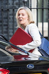 Downing Street, London, April 12th 2016. Environment Food and Rural Affairs Secretary Elizabeth Truss arrives at the weekly cabinet meeting. ©Paul Davey<br /> FOR LICENCING CONTACT: Paul Davey +44 (0) 7966 016 296 paul@pauldaveycreative.co.uk