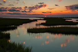 Gulf Coast Marshland