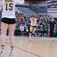 Women's Volleyball 16/17