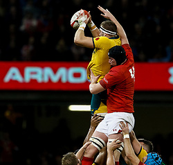 Izack Rodda of Australia claims the lineout despite the attentions of Adam Beard of Wales<br /> <br /> Photographer Simon King/Replay Images<br /> <br /> Under Armour Series - Wales v Australia - Saturday 10th November 2018 - Principality Stadium - Cardiff<br /> <br /> World Copyright © Replay Images . All rights reserved. info@replayimages.co.uk - http://replayimages.co.uk
