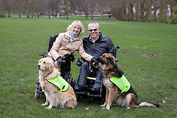 © Licensed to London News Pictures. 21/02/2013. London, UK. Max (L) and Ziggy (R), two assistance dogs who helped their wheelchair bound owners find love are seen with owners Sue Harvey (L) and Byron Harvey (R), at the photocall for the finalists of the 'Friends for Life' competition in London today (21/02/2013). The Kennel Club's 'Friends for Life' competition, which has been running since 2006, celebrates heart-warming stories of friendship in adversity, the dog that the public votes as the winner will be presented with a trophy in the main arena during Crufts at the Birmingham NEC on the 10th March. Photo credit: Matt Cetti-Roberts/LNP