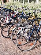 Bicycles at Le Martray, Île de Ré, France