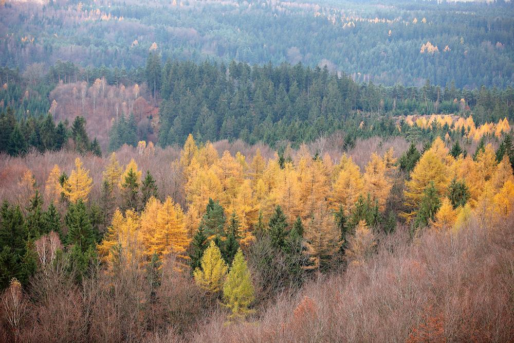LANDSCAPE FROM STRIBRNE STENY, 459 m. HRENSKO. CESKE SVYCARSKO. CZECH REPUBLIC.
