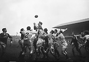 Irish captain Mulcahy, outleaps Englands Thorne and Owen, as he gathers a line out,..Irish Rugby Football Union, Ireland v England, Five Nations, Landsdowne Road, Dublin, Ireland, Saturday 9th February, 1963,.9.2.1963, 2.9.1963,..Referee- H B Laidlaw, Scottish Rugby Union, ..Score- Ireland 0 - 0 England, ..Irish Team, ..B D E Marshall, Wearing number 15 Irish jersey, Full Back, Queens University Rugby Football Club, Belfast, Northern Ireland,..W R Hunter, Wearing number 14 Irish jersey, Right Wing, C I Y M S Rugby Football Club, Belfast, Northern Ireland, ..J C Walsh,  Wearing number 13 Irish jersey, Right Centre, University college Cork Football Club, Cork, Ireland,..P J Casey, Wearing number 12 Irish jersey, Left Centre, University College Dublin Rugby Football Club, Dublin, Ireland, ..N H Brophy, Wearing number 11 Irish jersey, Left wing, Blackrock College Rugby Football Club, Dublin, Ireland, ..M A English, Wearing number 10 Irish jersey, Stand Off, Landsdowne Rugby Football Club, Dublin, Ireland, ..J C Kelly, Wearing number 9 Irish jersey, Scrum Half, University College Dublin Rugby Football Club, Dublin, Ireland,..R J McLoughlin, Wearing number 1 Irish jersey, Forward, Blackrock College Rugby Football Club, Dublin, Ireland, ..A R Dawson, Wearing number 2 Irish jersey, Forward, Wanderers Rugby Football Club, Dublin, Ireland, ..S Millar, Wearing number 3 Irish jersey, Forward, Ballymena Rugby Football Club, Antrim, Northern Ireland,..W A Mulcahy, Wearing number 5 Irish jersey, Captain of the Irish team, Forward, Bective Rangers Rugby Football Club, Dublin, Ireland,  ..W J McBride, Wearing number 5 Irish jersey, Forward, Ballymena Rugby Football Club, Antrim, Northern Ireland,..E P McGuire, Wearing number 6 Irish jersey, Forward, University college Galway Football Club, Galway, Ireland,..C J Dick, Wearing number 8 Irish jersey, Forward, Ballymena Rugby Football Club, Antrim, Northern Ireland,..M D Kiely, Wearing number 7 Irish jersey, Forward, Landsdowne Rugby Fo