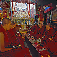 Lhasa, Tibet, People's Republic of China. Tibetan Buddhist nuns chant and pray in a temple at their nunnery.