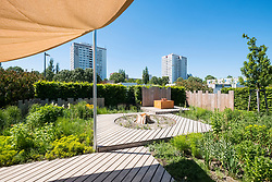Prairie with Wood garden , one of the Garden Settings , ideas for urban gardens at IGA 2017 International Garden Festival (International Garten Ausstellung) in Berlin, Germany
