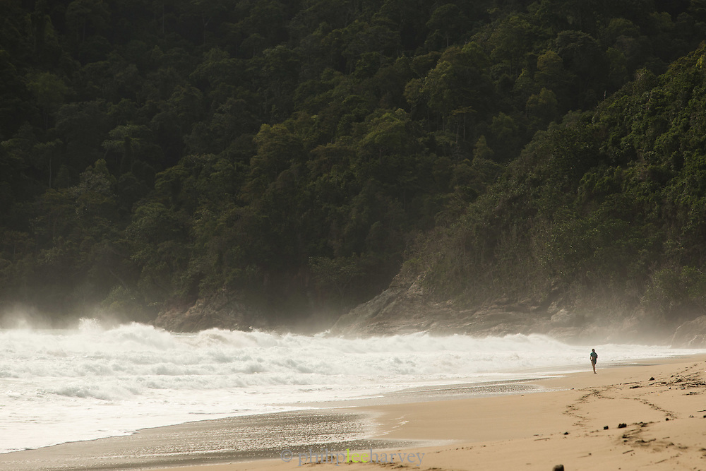 Individual standing by the sea, Sukamade Beach, Meru Betiri National Park, East Java, Indonesia, Southeast Asia