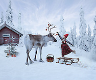 THE REINDEER WISH<br /> <br /> A PHOTOGRAPHIC FAIRYTALE