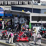 Nov 01 2020  Monterey, CA, U.S.A.  Whelen Engineering Racing # 31 Drivers  F. Nasr / P. Derani makes a pit stop during the Hyundai Monterey Sports Car Championship at Weathertech Laguna Seca  Monterey, CA  Thurman James