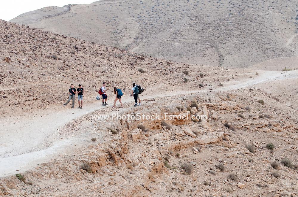A group hiking in the Negev Desert Photographed in Nahal  Tzeelim [Tze'eelim Stream], Negev Desert, Israel  in December