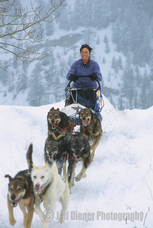A young woman runs a dogsled team in Jackson Hole, Wyoming.