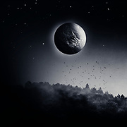 woodland at night with planetary body in the sky - surreal photo manipulation